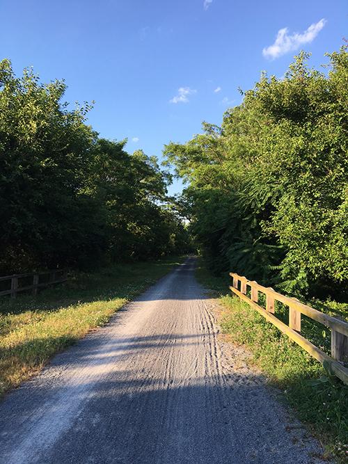 Bike 1-blog